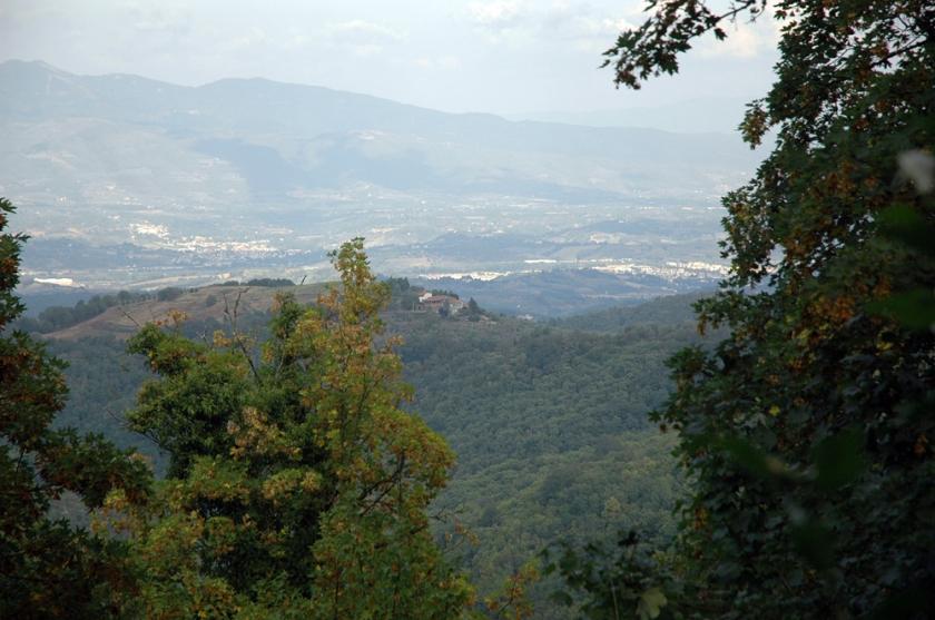 View from Badia a Coltibuono