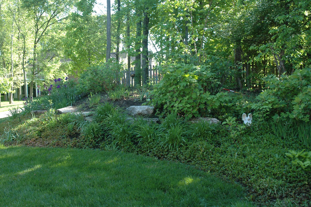 Front yard garden plants - Angel And Woodland Gardens Christine M Grote