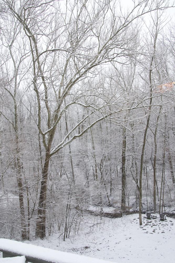 04-snowfall-2013-03-25