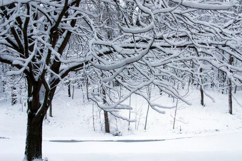 blog-01-snowfall-2013-03-06