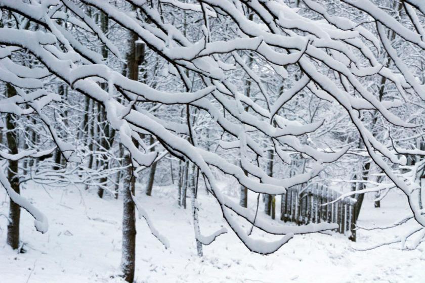 blog-03-snowfall-2013-03-06