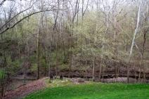 04-April_14_Woods-2013-04-15