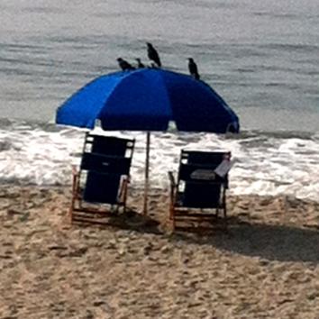 01a-Beach-2013-09-10