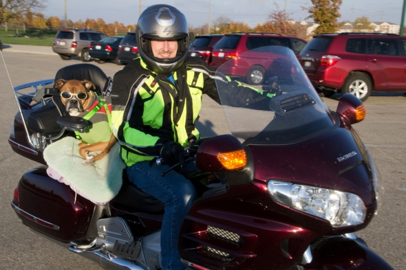 04-Man_dog_and_bike-sm-2013-11-09