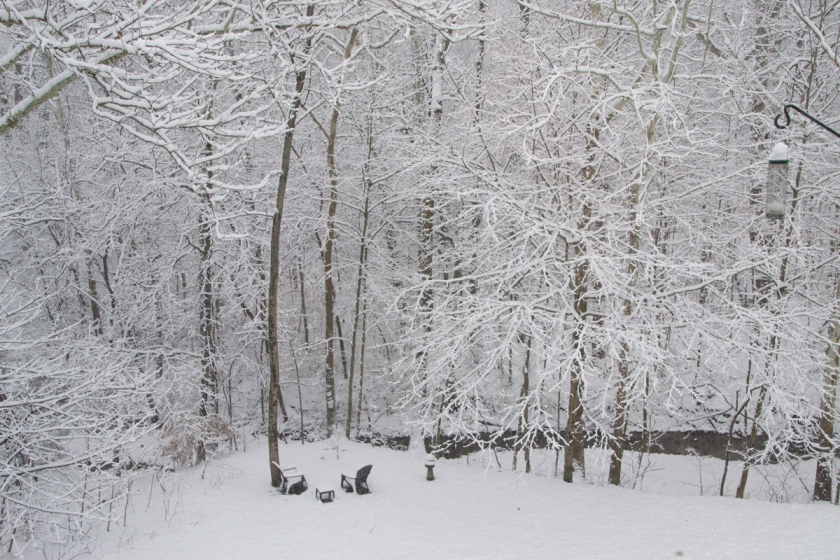 00-Snow-2014-01-02