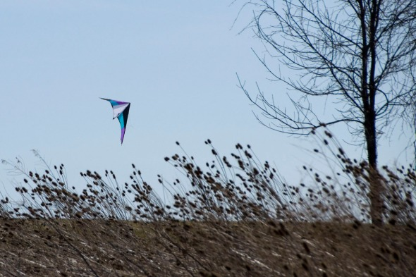 02-kite-2-2014-04-21