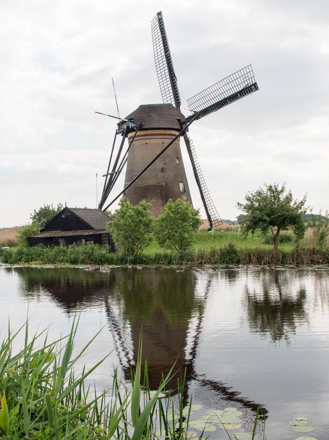 09-Kinderdijk-2014-06-07