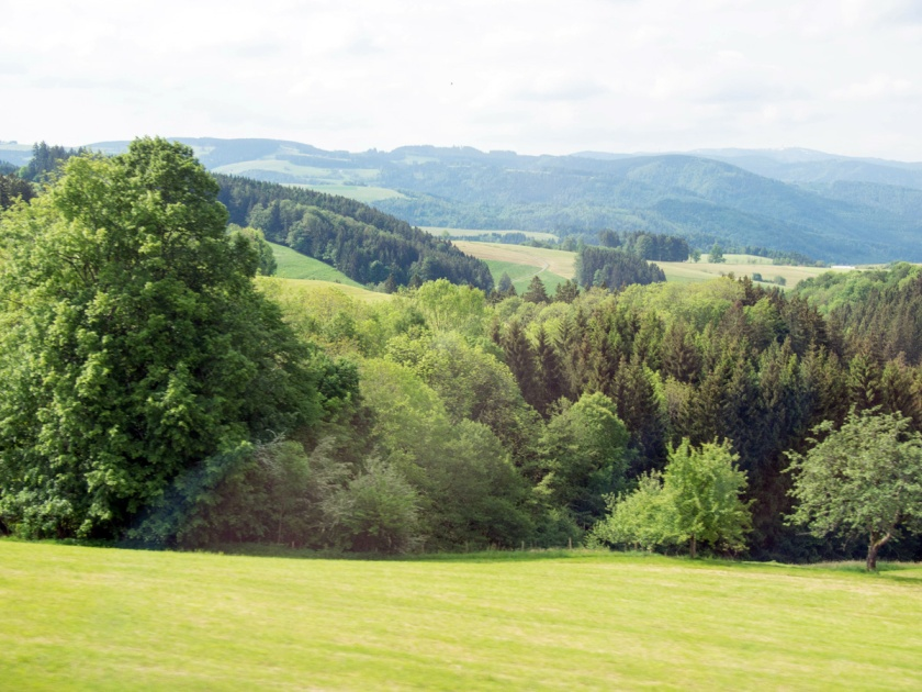 Black Forest - 2014-06-14 --12