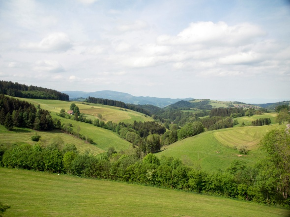 Black Forest - 2014-06-14 --13