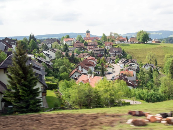 Black Forest - 2014-06-14 --14