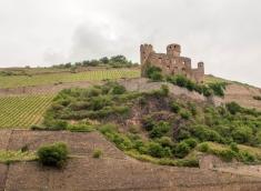 02-Castles on Rhine-edits-10