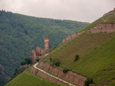 02-Castles on Rhine-edits-7
