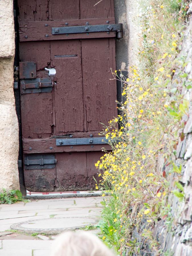 Marksburg_castle-2014-08-03-6 copy