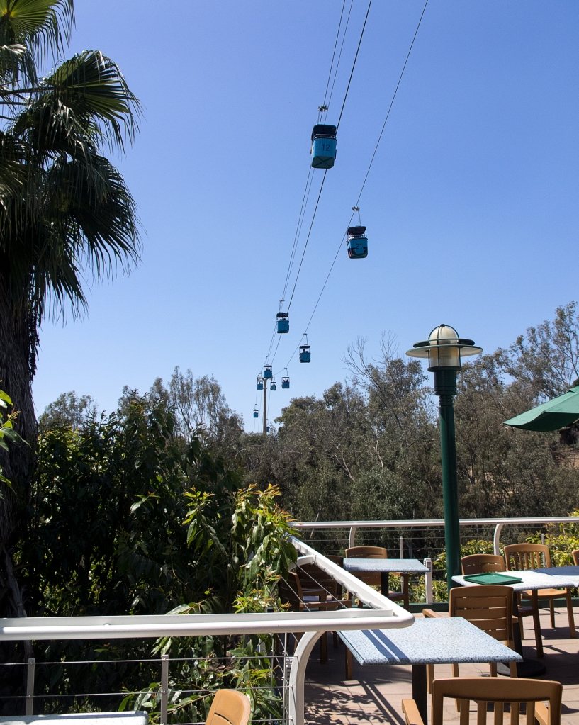 San Diego Zoo sky ride